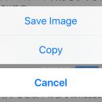 iPhone・iPadのSafariで画像を保存する方法