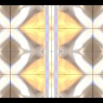 atnr – Reflections