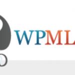 【WordPress】WPMLを使用する際ループで他言語の投稿の重複しないようにする方法
